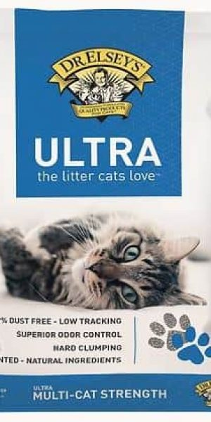 Dr. Elsey's Precious Cat Ultra Unscented Clumping Clay Cat Litter